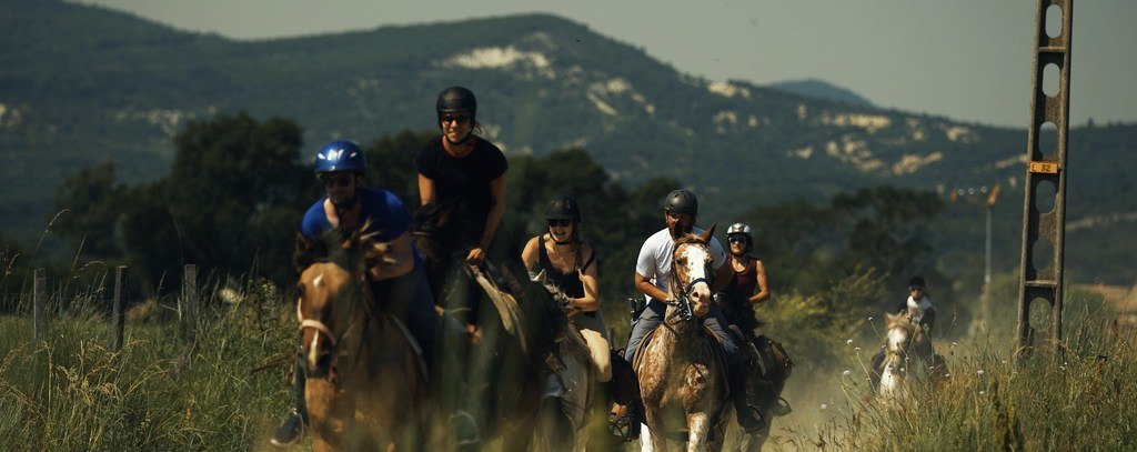 riding experience gallop