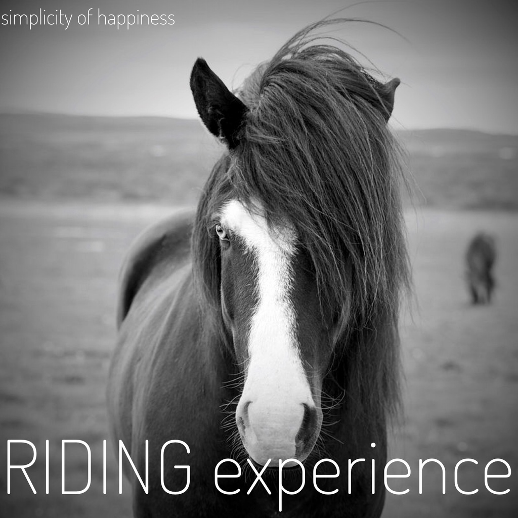 riding experience square