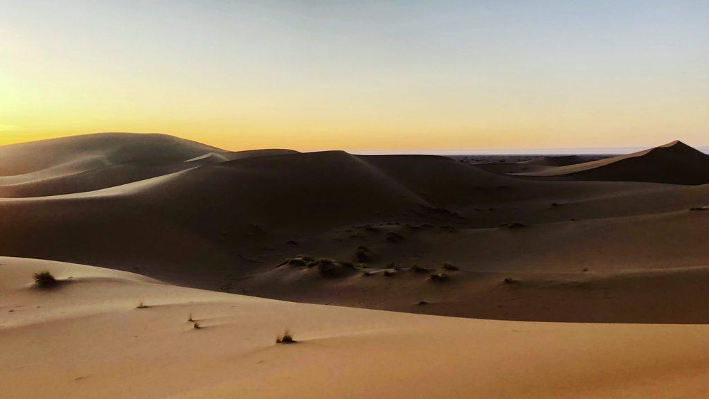 sahara experience dunes near mhamid